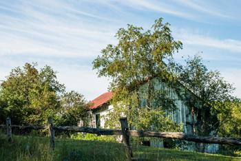 Red Roof Barn - Rusty Lofgren