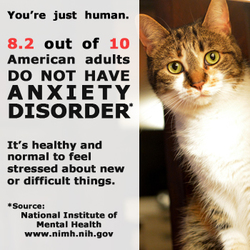 Mental Health Awareness Adult Anxiety Cat