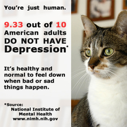 Mental Health Awareness Adult Depression Cat