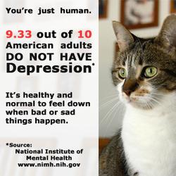 Mental Health Awareness Adult Depression Cat