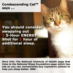 Condescending Cat 16-Hour Energy Plan