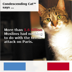 Condescending Cat Knows You Might Be A Terrorist