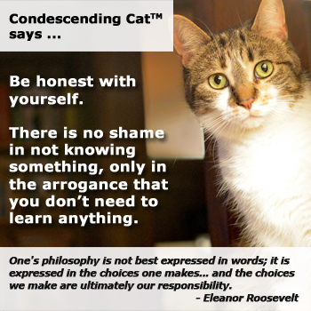 Condescending Cat Want You to Accept Your Limitations
